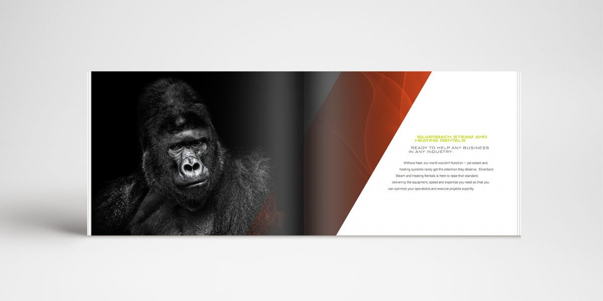 Example of a page of Silverback's brochure